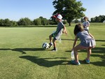 Testing Turf Grass 11
