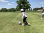 Testing Turf Grass 26