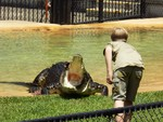 Robert Irwin Feeds a Croc on Steve Irwin Day by Sarah Caroline Halford